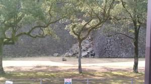 cozy KKR リ・ガーデン 造園 ガーデンウエディング 熊本城 復旧