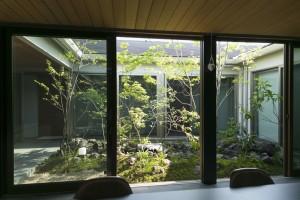 cozy garden 中庭