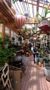 cozy garden solsofarm 雑貨