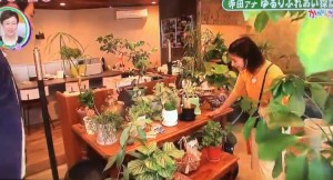 cozy garden かたらんね TKU